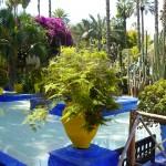 Marrakech : l'extraordinaire destin du jardin Majorelle