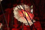 Fête des Lumières 2016 - Les Pivoines – Place de la Bourse